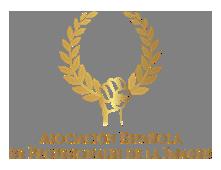 asocicion espnola de profesionales de imagen logo giset wedding